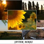 JAVIER MIRAS (Small)