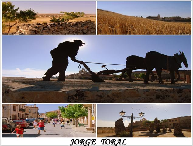 JORGE TORAL (Small)